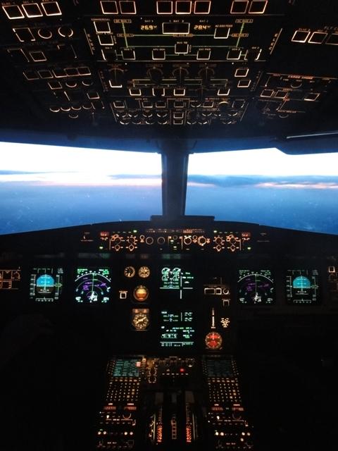 Viel Technik steckt in so einem A320 ...