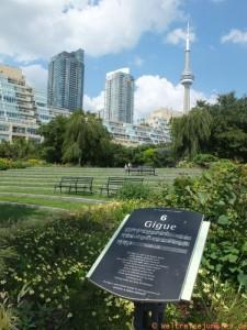 waterfront Toronto 003