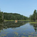 Algonquin Park in Kanada – Die besten Reisetipps