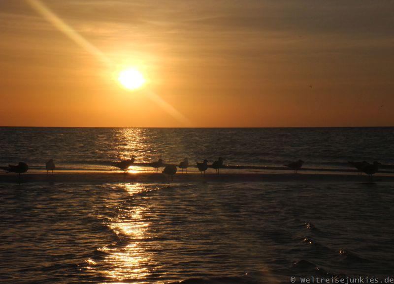 Isla Holbox 07