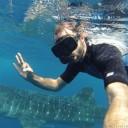 Meine Begegnung mit einem Walhai